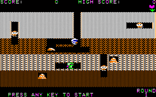 Dig Dug Screenshot 1