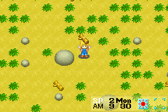 Harvest Moon - More Friends of Mineral Town Screenshot 3