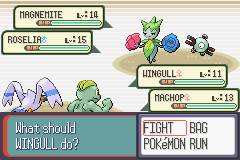 Pokemon Double Battle