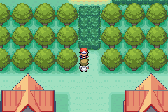 Pokemon Saga - DarkViolet (beta 1) Screenshot 3