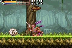 Play Tak - The Great Juju Challenge online - Game Boy Advance game rom