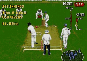 Brian Lara Cricket Screenshot 1