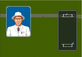 Brian Lara Cricket Screenshot 3