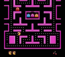 Ms Pac-Man Screenshot 2