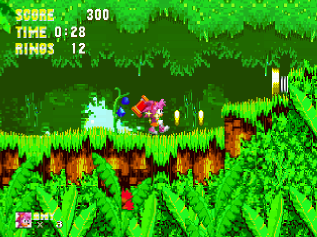 Sonic 3 & Amy Rose