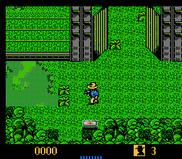 Play The Lost World - Jurassic Park Online NES Game Rom