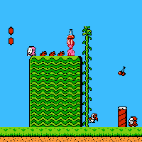 Super Mario Bros 2 Screenshot 2