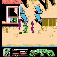 Teenage Mutant Ninja Turtles III Screenshot 2