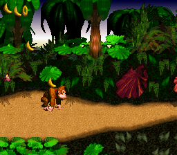 Donkey Kong Country Screenshot 1