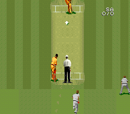 Super International Cricket Screenshot 2