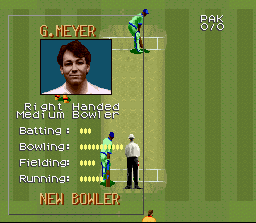Super International Cricket Screenshot 3