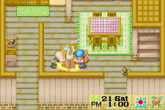 Harvest Moon - Friends of Mineral Town - OBJECTION!!! - User Screenshot