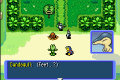 Pokemon Mystery Dungeon - Red Rescue Team - Feet? - User Screenshot