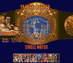 Saturday Night Slam Masters -  - User Screenshot