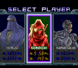 Ninja Warriors, The - Character Selection - User Screenshot