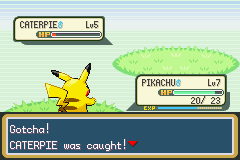 Pokemon Ash Gray (beta 2.5z) - w00t!! i caught a caterpie.... - User Screenshot