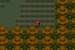 Pokemon Ash Gray (beta 2.5z) - i am lost in viridian forest - User Screenshot