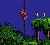 Donkey Kong Country - Level ropey jungle - swing rope to rope until the end - User Screenshot