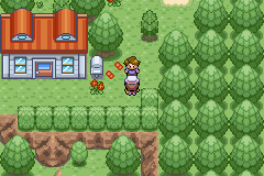 Pokemon Turquoise (beta 1.2) - do NOT talk to this guy after 1st pokemon! - User Screenshot