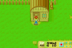Harvest Moon - More Friends of Mineral Town - Misc won just came... - uhhh it looks like an apple. - User Screenshot