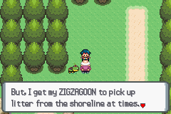 Pokemon Platinum - That is so not a Zigzagoon - User Screenshot