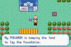 Pokemon Kohaku Adventures - What land - User Screenshot