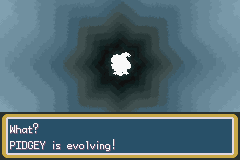 Pokemon Kohaku Adventures - What pokemon is that - User Screenshot