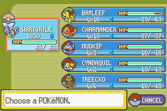 Pokemon Rebirth - Menus Pokemon Team - first gym good team ^^ - User Screenshot
