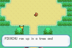 Pokemon Ash Gray (beta 3.61) - Pikachu what the hey hey?! - User Screenshot