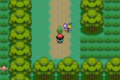 Pokemon Ash Gray (beta 3.61) - Cut-Scene  - I like this picture - User Screenshot
