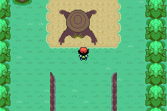 Pokemon Ash Gray (beta 3.61) - Misc  - This is an interesting looking stump - User Screenshot