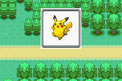 Pokemon Ash Gray (beta 3.61) - Misc  -  - User Screenshot