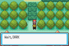 Pokemon Saga - DarkViolet (beta 1) - i wanted a battle - User Screenshot