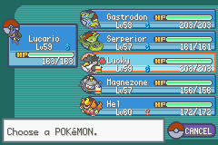 Pokemon - Yet Another Fire Red Hack - THIS IS TRUE TEAM - User Screenshot