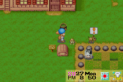 Harvest Moon - Friends of Mineral Town - thts right you better run - User Screenshot