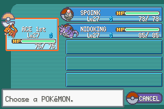 Pokemon Furious Flames (Beta 2.20) - my team after 2nd gym - User Screenshot