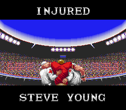 Tecmo Super Bowl - concussion number 756 - User Screenshot