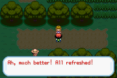 Pokemon Ash Gray (beta 3.61) - Misc Behind the scenes action - Yeah..umm I had fun too. - User Screenshot