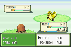 Pokemon Rijon Adventures - my second shiny on vizzed.  - User Screenshot