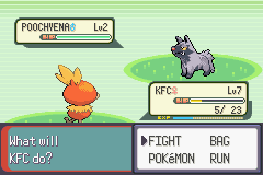 Pokemon Emerald - Battle  -  - User Screenshot