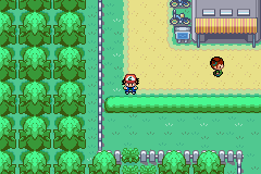 Pokemon Ash Gray (beta 3.61) - the h.v. is down that path - User Screenshot