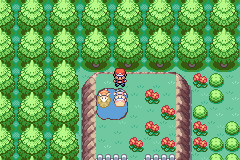 Pokemon Rijon Adventures - Misc  -  - User Screenshot