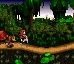 Donkey Kong Country - Misc glitches - Uh, donkey, I hope you broke your arm - User Screenshot