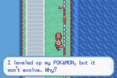 Pokemon Alt Evo Fire Red - Because you have a lvl 41 blaziken  - User Screenshot