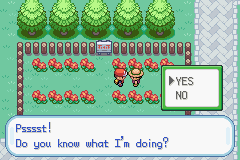 Pokemon Chaos Black - I dont want to know - User Screenshot