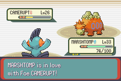 Pokemon Emerald - Battle  - LOL wtf??? - User Screenshot