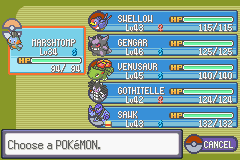Pokemon Flora Sky - Complement Dex Version - Character Profile Pokemon Team - My team after the 7th badge. C: - User Screenshot