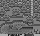Wario Land - Super Mario Land 3 - Battle  - Parsley Woods Map - User Screenshot