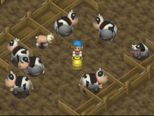 Harvest Moon 64 - Golden milk jug from taking 1st at cow fest. - User Screenshot