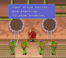 Teenage Mutant Ninja Turtles IV - Turtles in Time - DONE! - User Screenshot